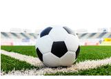 Cerca immagini  pallone calcio